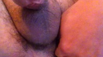 ass  cocks  dildos