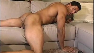 cocks  gay man  gay sex